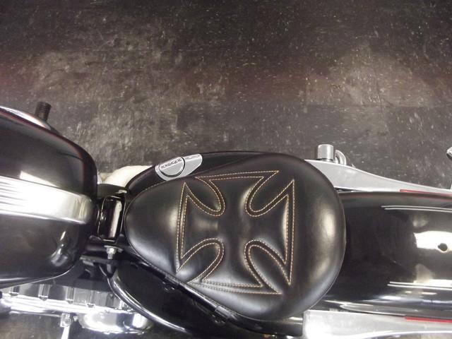 2010 Harley-Davidson Sportster 1200 Custom XL1200C Arlington, Texas 8