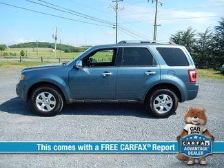 2011 Ford Escape Limited   Harrisonburg, VA   Armstrong's Auto Sales in Harrisonburg VA