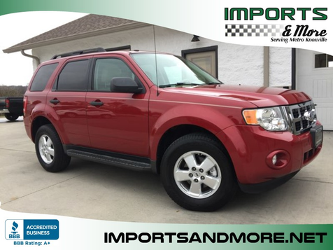 2011 Ford Escape XLT in Lenoir City, TN