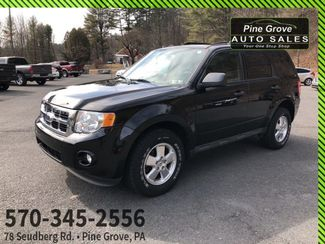 2011 Ford Escape in Pine Grove PA