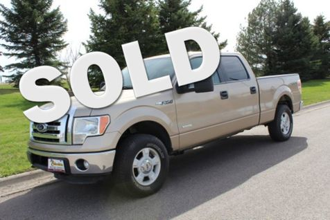 2011 Ford F-150 XL SuperCrew 5.5-ft. Bed 4WD in Great Falls, MT