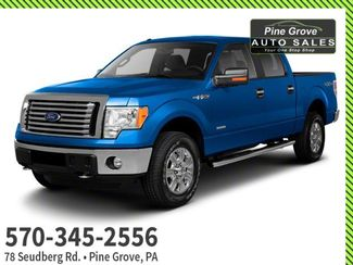 2011 Ford F-150 in Pine Grove PA