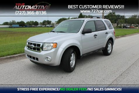 2012 Ford Escape XLT in PINELLAS PARK, FL