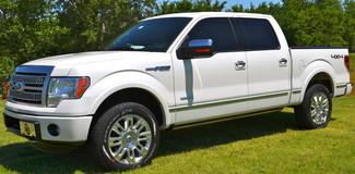 2012 Ford F-150 4x4 Nav DVD Bed Cover Platinum Lindsay, Oklahoma 18