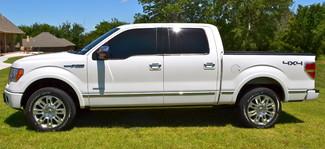 2012 Ford F-150 4x4 Nav DVD Bed Cover Platinum Lindsay, Oklahoma 19