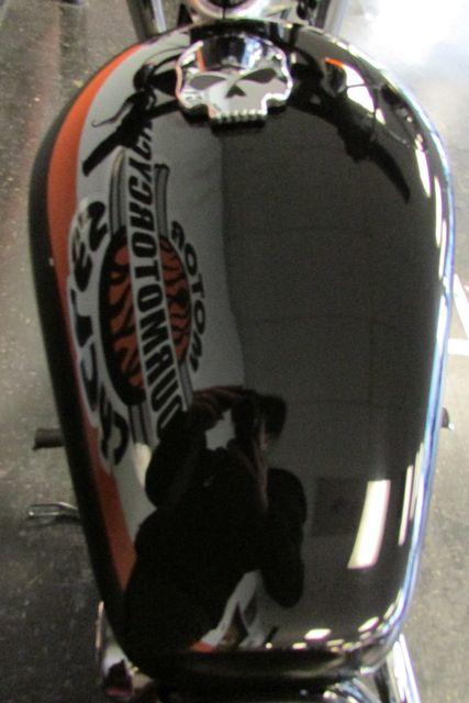 2012 Harley-Davidson Sportster® 1200 Custom Arlington, Texas 22
