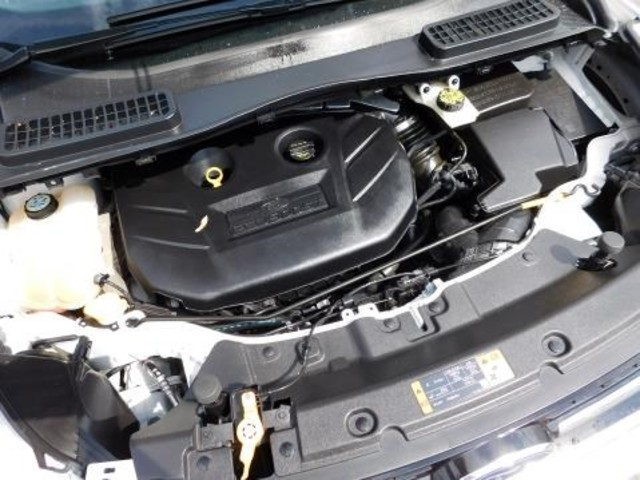 2013 Ford Escape SEL Ephrata, PA 24