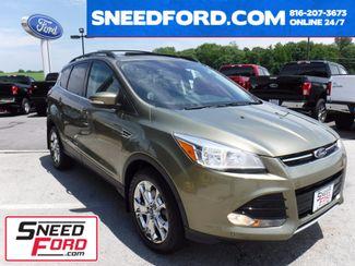 2013 Ford Escape SEL 4X4 in Gower Missouri