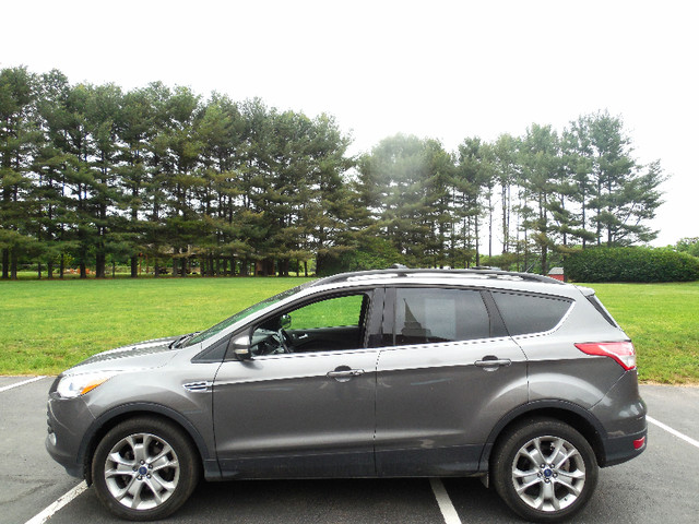 2013 Ford Escape SEL Leesburg, Virginia 4