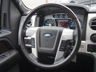 2013 Ford F-150 Platinum Englewood, CO 14