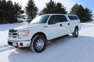 2013 Ford F-150 in Great Falls, MT