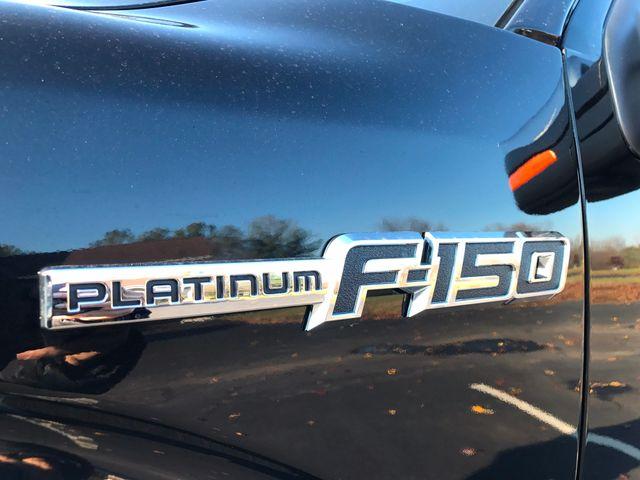 2013 Ford F-150 Platinum Leesburg, Virginia 9