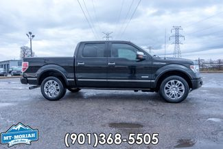 2013 Ford F-150 Platinum in  Tennessee