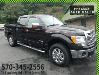 2013 Ford F-150 in Pine Grove PA