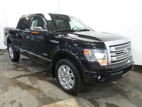 2013 Ford F-150 Platinum in Victoria, MN