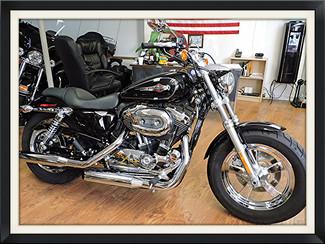 2013 Harley Davidson Sportster 1200 C XL1200C Pompano, Florida