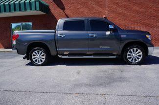 2013 Toyota Tundra Platinum Loganville, Georgia 11