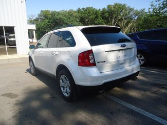 2014 Ford Edge SEL SEFFNER, Florida 11