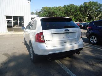 2014 Ford Edge SEL SEFFNER, Florida 12