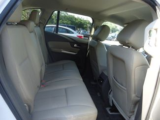 2014 Ford Edge SEL SEFFNER, Florida 18