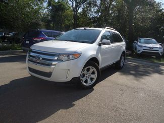 2014 Ford Edge SEL SEFFNER, Florida 4