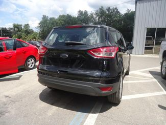 2014 Ford Escape SEFFNER, Florida 10