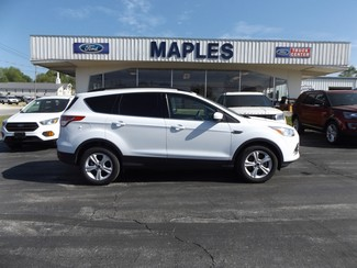 2014 Ford Escape SE Warsaw, Missouri 10