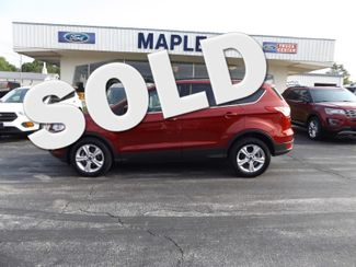2014 Ford Escape SE Warsaw, Missouri 0