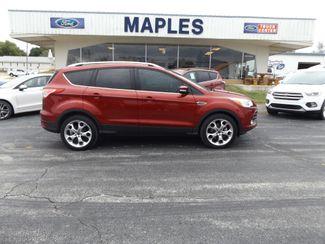 2014 Ford Escape Titanium Warsaw, Missouri 10