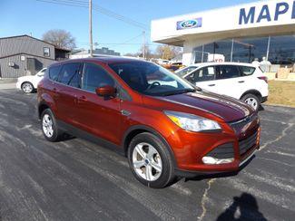 2014 Ford Escape SE Warsaw, Missouri 10
