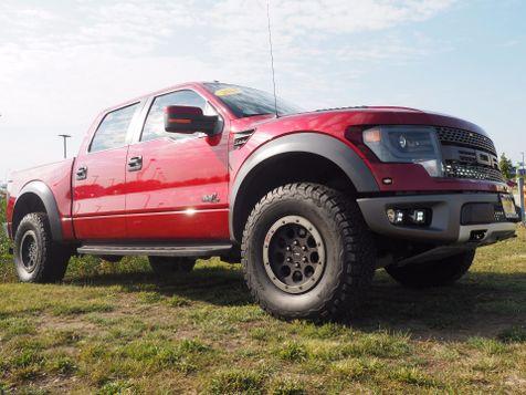 2014 Ford F-150 SVT Raptor | Champaign, Illinois | The Auto Mall of Champaign in Champaign, Illinois