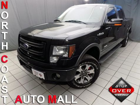 2014 Ford F-150 FX4 in Cleveland, Ohio