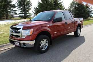 2014 Ford F-150 in Great Falls, MT