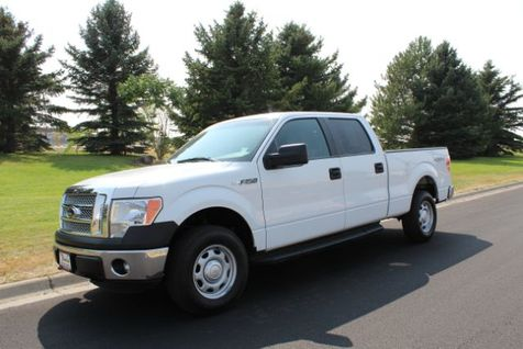 2014 Ford F-150 XL SuperCrew 5.5-ft. Bed 4WD in Great Falls, MT