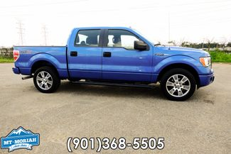 2014 Ford F-150 XLT in  Tennessee