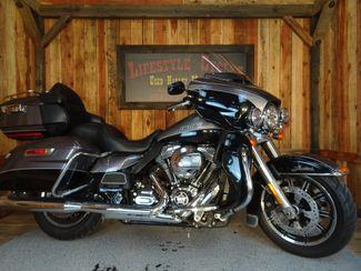 2014 Harley-Davidson Electra Glide® Anaheim, California 8