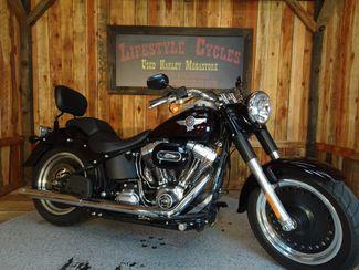 2014 Harley-Davidson Softail® Fat Boy® Lo Anaheim, California 14