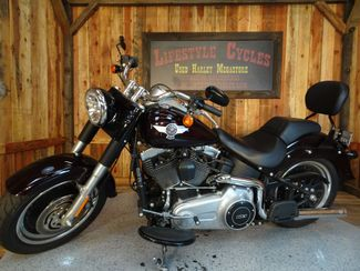 2014 Harley-Davidson Softail® Fat Boy® Lo Anaheim, California 15