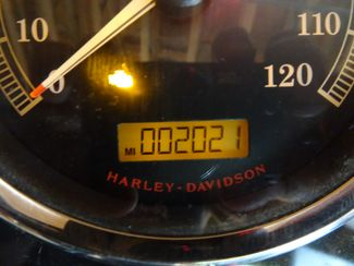 2014 Harley-Davidson Softail® Fat Boy® Lo Anaheim, California 25