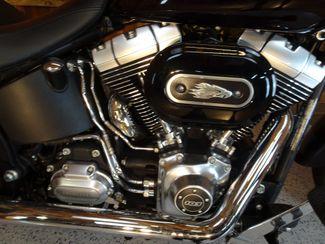 2014 Harley-Davidson Softail® Fat Boy® Lo Anaheim, California 5