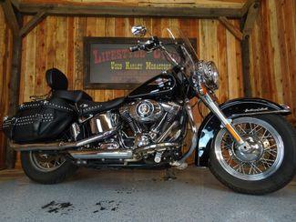 2014 Harley-Davidson Softail® Anaheim, California 14