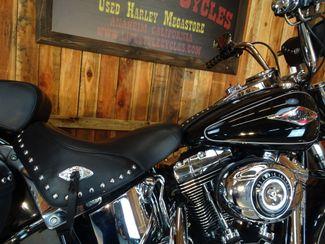 2014 Harley-Davidson Softail® Anaheim, California 9