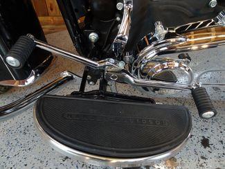 2014 Harley-Davidson Softail® Anaheim, California 21