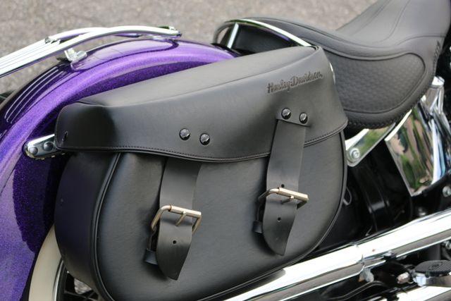 2014 Harley-Davidson Softail® Deluxe Mooresville, North Carolina 18