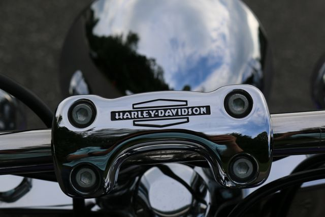 2014 Harley-Davidson Softail® Deluxe Mooresville, North Carolina 19