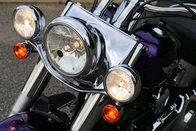 2014 Harley-Davidson Softail® Deluxe Mooresville, North Carolina 25