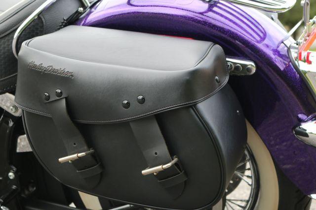 2014 Harley-Davidson Softail® Deluxe Mooresville, North Carolina 31