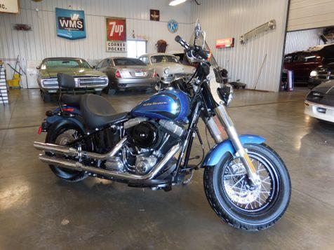 2014 Harley-Davidson Softail® Slim® in , Ohio