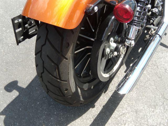 2014 Harley-Davidson Sportster® Iron 883™ Ephrata, PA 3