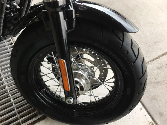 2014 Harley-Davidson Sportster® Forty-Eight® Ogden, Utah 1